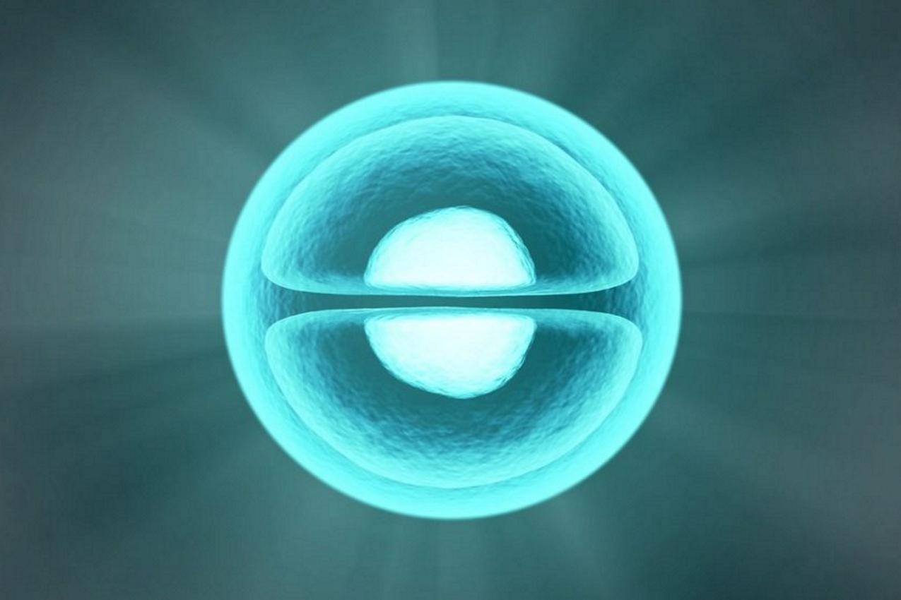 numerical simulation of viscous shocked